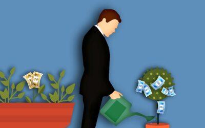 Finanční poradkyně Lucie: jak si zajistit příjem